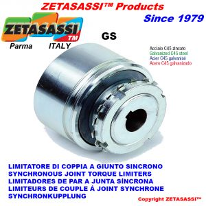 """Synchronous joint torque limiters """"GS"""""""