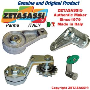 ROTARY TENSIONERS
