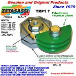 ROTARY DRIVE CHAIN TENSIONER TRP1 chain slider round head