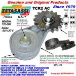 ROTARY DRIVE CHAIN TENSIONER TCR2 idler sprocket
