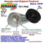 ROTARY BELT TENSIONERS - TC1 PUG with rim pulley