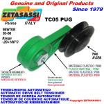ROTARY BELT TENSIONERS - TC05 PUG with rim pulley