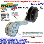 ROTARY BELT TENSIONERS - TR1 PUG with rim pulley