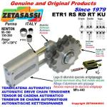 LINEAR DRIVE CHAIN TENSIONER ETR1 idler sprocket (PTFE)