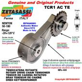 "Tendicatena rotante TCR1ACTE con pignone tendicatena semplice 16B1 1""x17 Z12 temprati Newton 50-180"