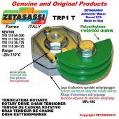 "Tendicatena rotante TRP1T 08B1 1/2""x5/16"" semplice Leva 111 Newton 50:210"