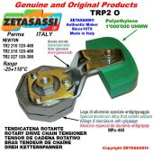 Tendicatena rotante TRP2O 12A1 ASA60 semplice Leva 210 Newton 120:480