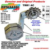 "Tendicatena rotante TRR1AC con pignone tendicatena semplice 20B1 1""¼x3\4"" Z9 Leva 118 Newton 30:175"