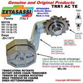 "Tendicatena rotante TRR1ACTE con pignone tendicatena semplice 16B1 1""x17 Z12 temprati Leva 111 Newton 50:210"