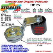 TENSOR DE CORREA ROTATIVO TR1PU con rodillo tensor y rodamientos Ø80xL90 en aluminio palanca 118 N30:175