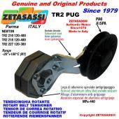 """TENSOR DE CORREA ROTATIVO TR2PUG con polea a garganta A/SPA y rodamientos en nylon tipo PUG 3"""" palanca 210 N120:480"""