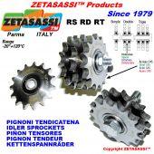 PIÑONES TIPO RS-RD-RT con rodamiento