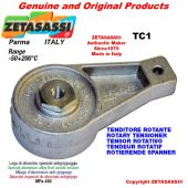 BRAS TENDEUR TC1 avec graisseur trou Ø12,5mm pour fixation de accessories Newton 50-180